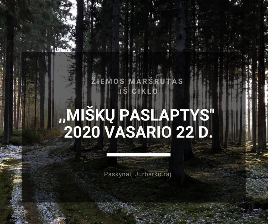 misku-paslaptys-2020-02-22