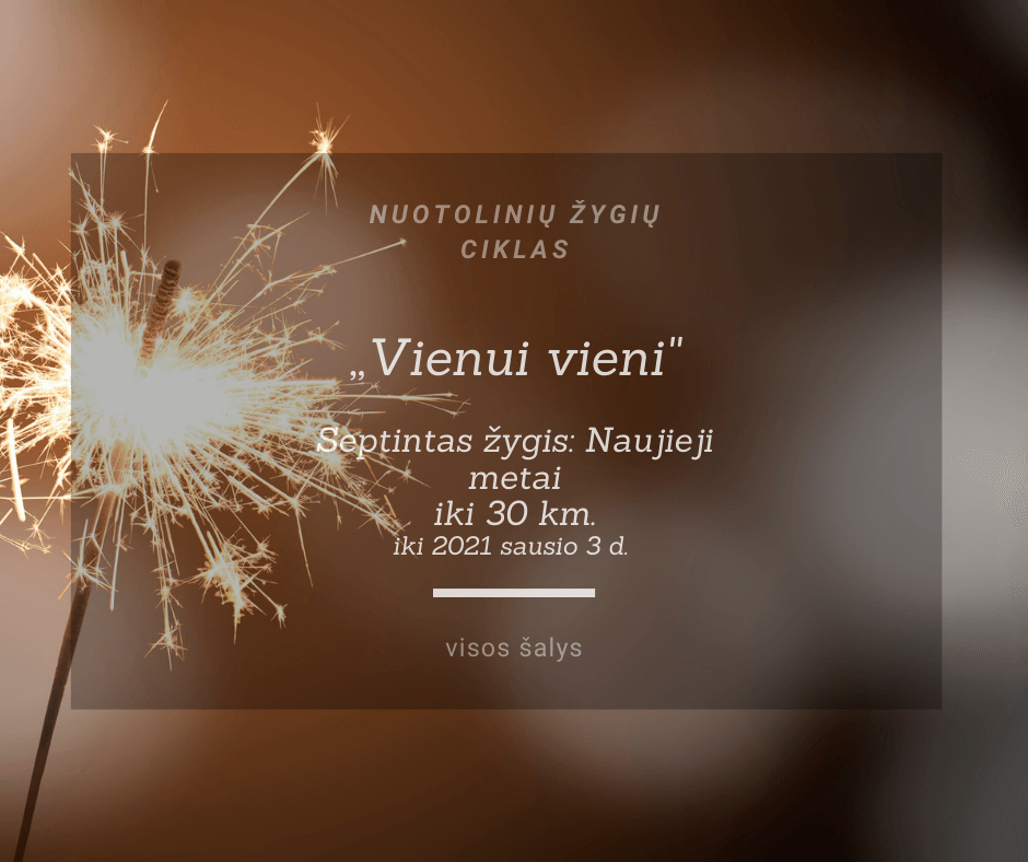VII-žygis. Naujieji metai.... </p> 