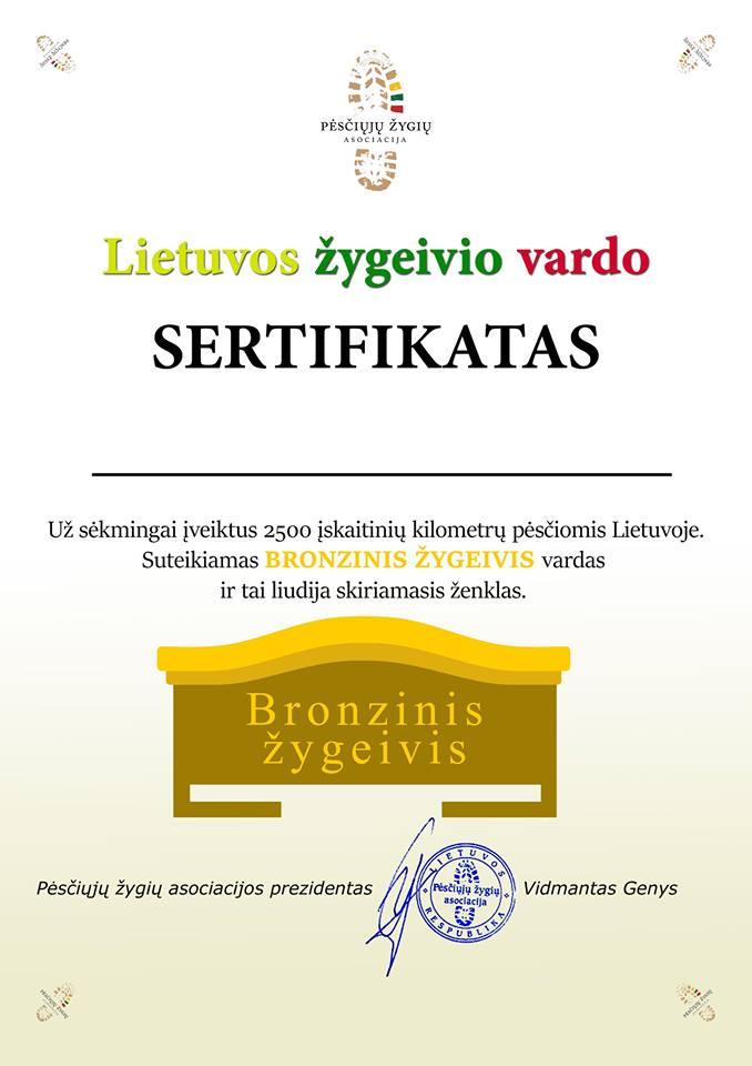 Bronzinis
